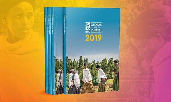 IFPRI 2019 Global food policy report