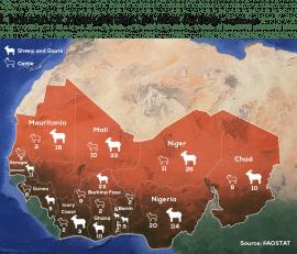 Video : Corridor to the future ? Mauritania's nomadic herders seek safe passage through drought