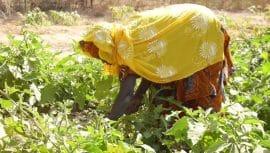 Entretien : Au Burkina