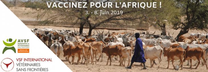"""Santé animale : AVSF entend y contribuer à travers sa campagne """"Vaccinez pour l'Afrique"""""""