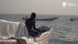 Reportage : Quand la pêche artisanale contribue à la biodiversité