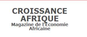 Article - Banques céréalières villageoises et perspectives