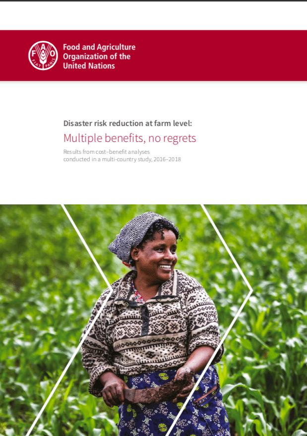 Etude - Réduire les risques de catastrophes au niveau des exploitations agricoles: de nombreux avantages, sans regret