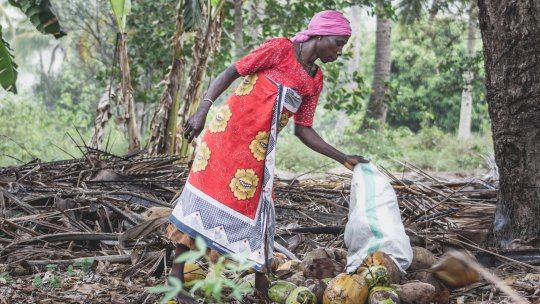 Webinar : Local solutions to strengthen women's voices in land governance