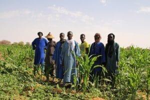 SOS Faim Belgique : au Sénégal