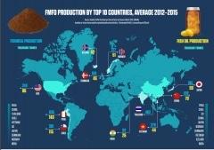 Rapport : Impacts de l'utilisation en aquaculture des farines et huiles de poissons sauvages