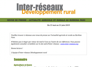 Actualité agricole au Burkina : la revue de presse du 23 mai au 21 juin 2019