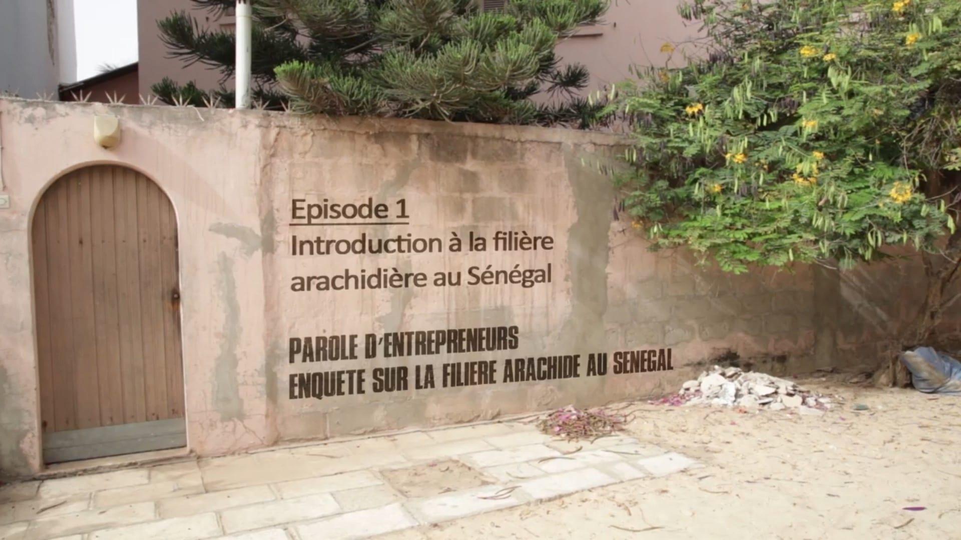 Vidéos : Filières avicole et arachide au Sénégal