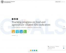 Rapport - Suivi des progrès réalisés vis-à-vis des ODD