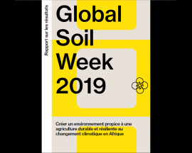 Rapport - Global soil week 2019