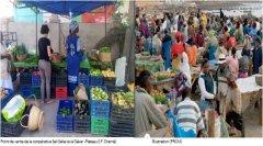 Revue Agridape : Promouvoir l'économie verte au Sénégal
