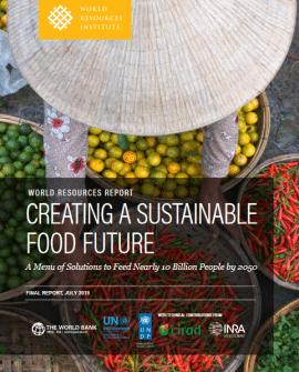 Rapport: Créer un avenir alimentaire durable