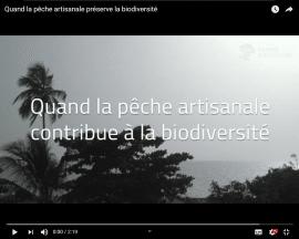 Video - Sénégal - Quand la pêche artisanale contribue à la biodiversité