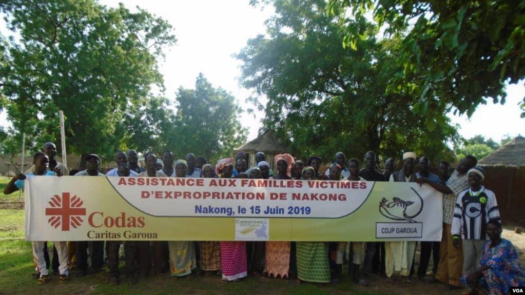 Article + audio : Problèmes dans le règlement des conflits agro-pastoraux au Cameroun