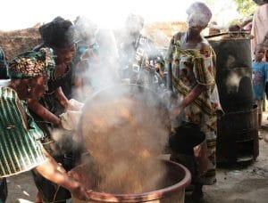 Rapport : La souveraineté alimentaire est la seule solution au chaos climatique pour l'Afrique