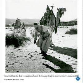 Exposition - Sahara