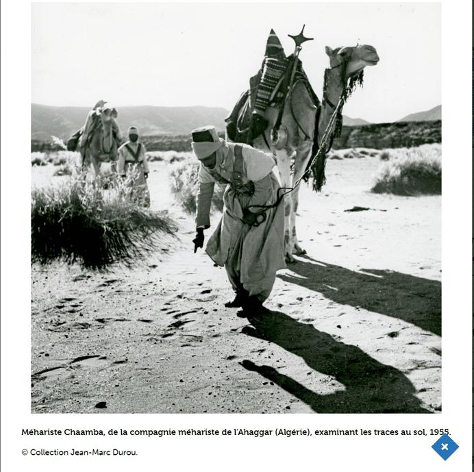 Exposition - Sahara, déconnecter les clichés