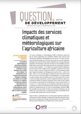 Synthèse de recherche : Impacts des services climatiques et météorologiques sur l'agriculture africaine