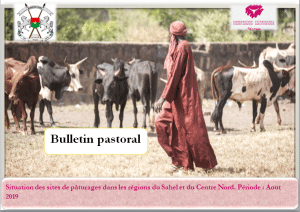 Bulletin : Situation pastorale au Burkina (Août 2019)