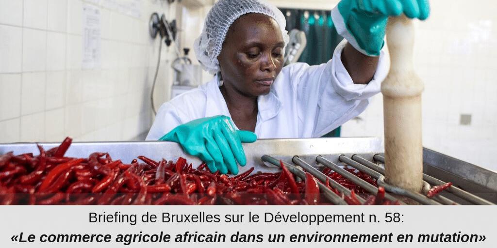 Briefing de Bruxelles n°58 : «Le commerce agricole africain dans un environnement en mutation»