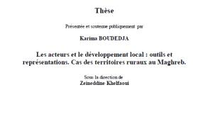 Thèse - Les acteurs et le développement local : outils et représentations. Cas des territoires ruraux au Maghreb