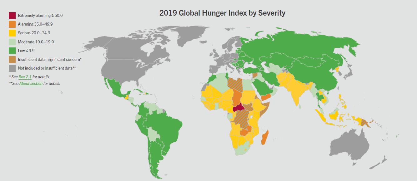 Rapport : Indice de la faim dans le monde 2019