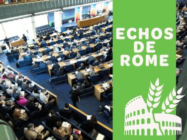 Compte-rendu : Echos de Rome – 46e session du CSA