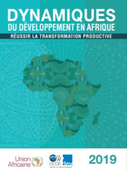 Rapport: Dynamiques du développement en Afrique (Deuxième édition)