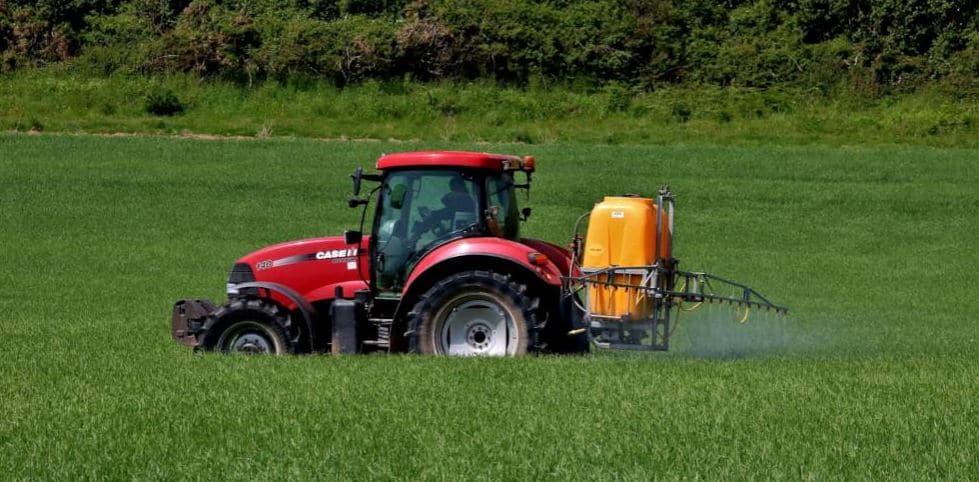 Article : Les dangers des insecticides néonicotinoïdes sur l'agriculture africaine