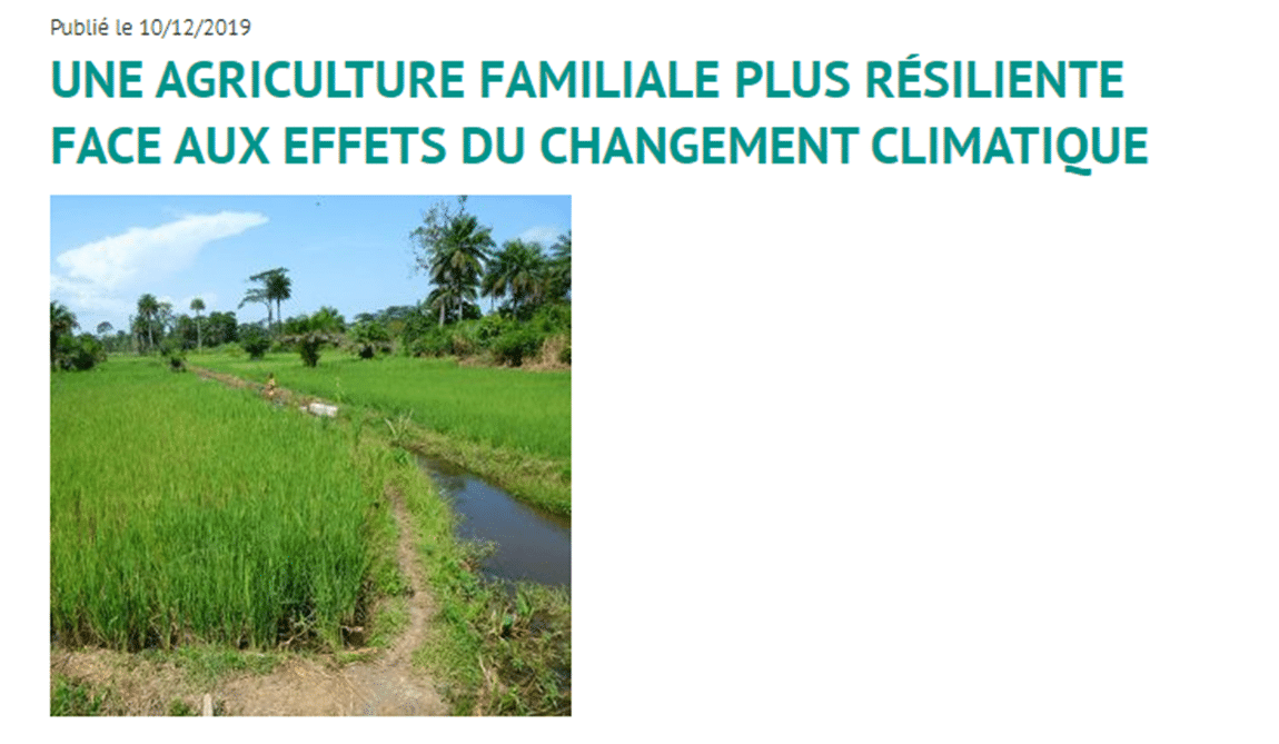 Article - Une agriculture familiale plus résiliente face aux effets du changement climatique