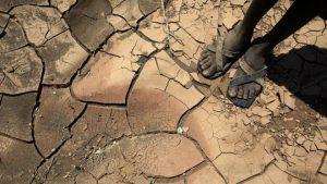 Article : Comment l'Afrique risque d'être affectée par le changement climatique