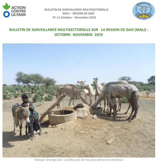 Bulletin de surveillance multisectorielle sur Gao (Mali)/Octobre-Novembre 2019