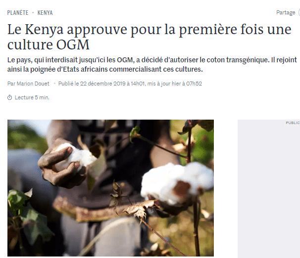 Brève: le Kenya approuve pour la première fois une culture OGM