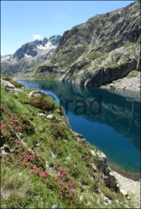 Formation professionnelle  Cirad : Les instruments économiques et juridiques climat et biodiversité