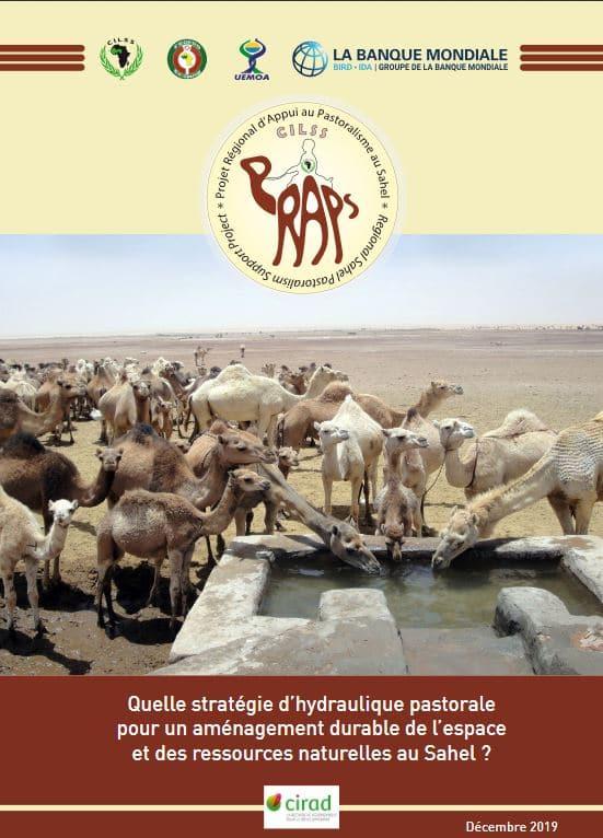 Note : Quelle stratégie d'hydraulique pastorale pour un aménagement durable de l'espace et des ressources naturelles au Sahel ?
