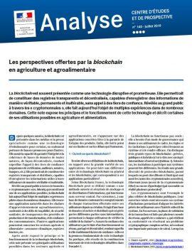 Note : Les perspectives offertes par la blockchain en agriculture et agroalimentaire
