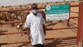 Emission : État de la santé animale dans le village de Rayane en Mauritanie