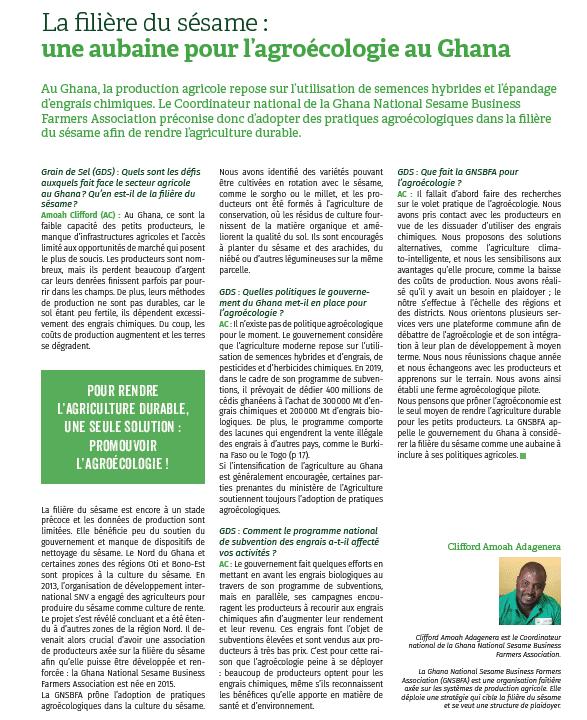La filière du sésame : une aubaine pour l'agroécologie au Ghana