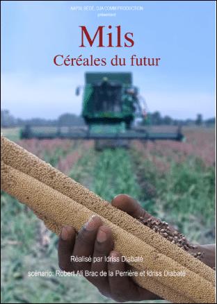 Film - Mils, céréales du futur