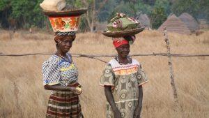 Webdocumentaire - La démarche agroécologique et citoyenne d'une fédération paysanne guinéenne