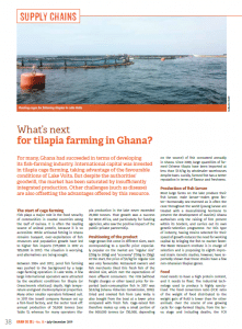 What's next for tilapia farming in Ghana?