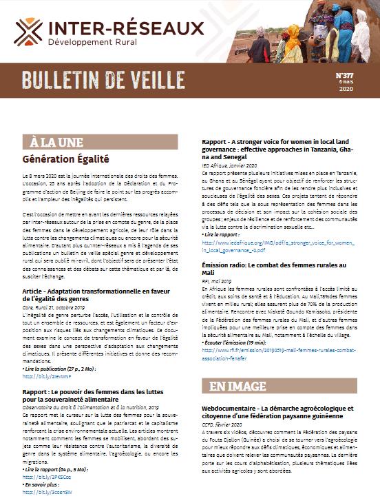 Bulletin de veille n°377