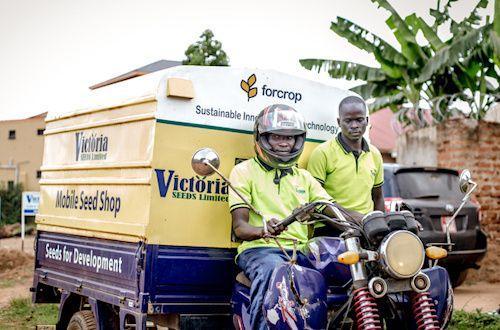 Entretien - « Face à l'industrie semencière, le continent africain devra miser sur le développement des savoirs endogènes locaux » (CIRAD)