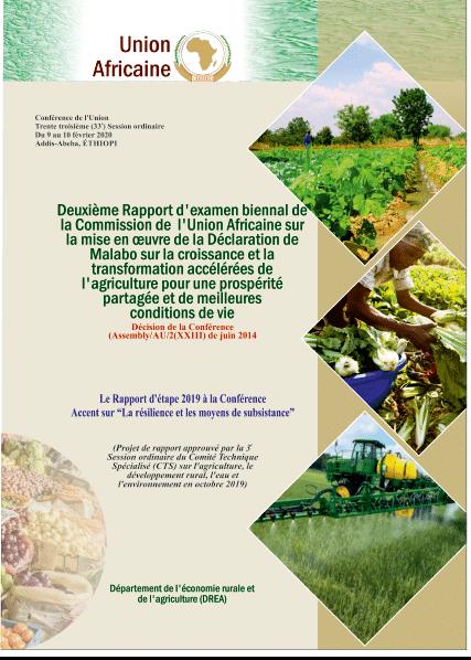 Rapport - 2ème rapport biennal sur les progrès réalisés dans la mise en œuvre de la Déclaration de Malabo