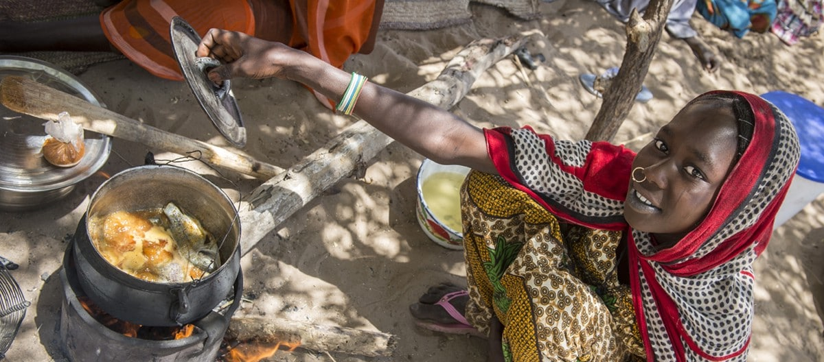 Article - How to minimize the impact of Coronavirus on food security