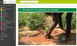 Vidéothèque - Access Agriculture