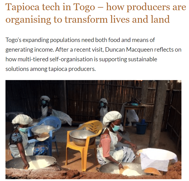 Article : Comment les producteurs de tapioca s'organisent pour transformer les vies et les terres ?