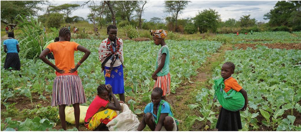 Article : Comment garantir l'approvisionnement alimentaire mondial pendant la pandémie du COVID-19?