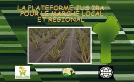 Vidéo : Plateforme d'innovation ANANAS au Bénin