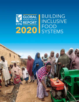 Rapport - 2020 - Global Food policy report : Building inclusive food systems